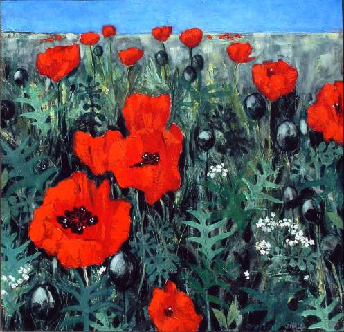 Poppy-Field---web-300dpi